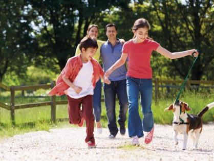 Nuevo plan de Previsión Mascotas y Portal Web Transaccional
